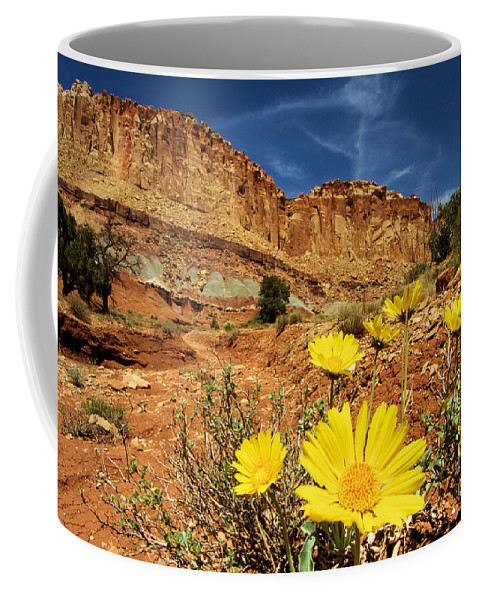 Yellow Flowers Coffee Mug featuring the photograph Capitol Flower Garden by Adam Jewell