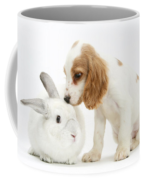 Nature Coffee Mug featuring the photograph Cocker Spaniel And Rabbit by Mark Taylor