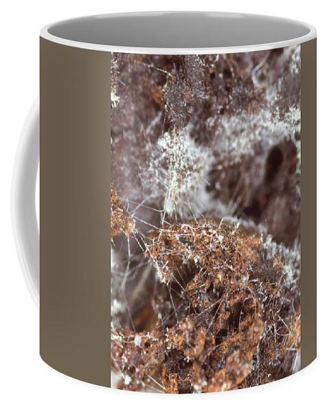 Coffee Coffee Mug featuring the photograph Coffee Grounds 2 by Jeffery Ball