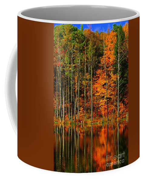 Leaves Coffee Mug featuring the photograph Coxsackie New York State by Mark Gilman