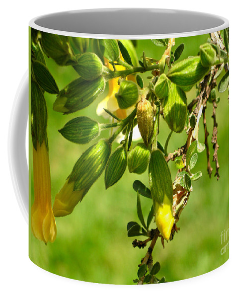 Cusco Coffee Mug featuring the digital art Cusco Peru Street Scenes by Carol Ailles