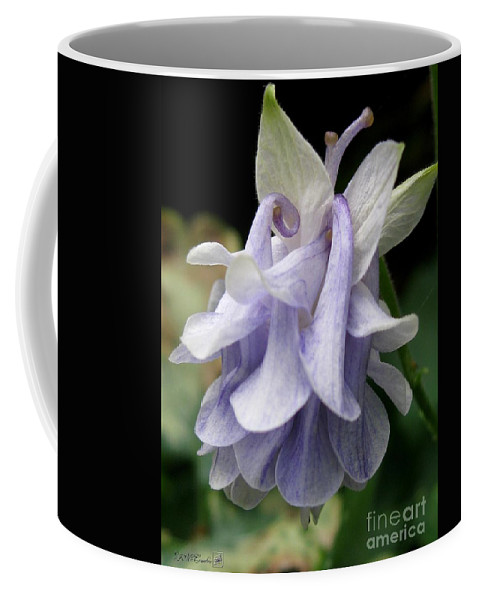 Double Columbine Coffee Mug featuring the photograph Double Columbine Named Light Blue by J McCombie