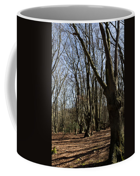 Epping Coffee Mug featuring the photograph Epping Forest by David Pyatt