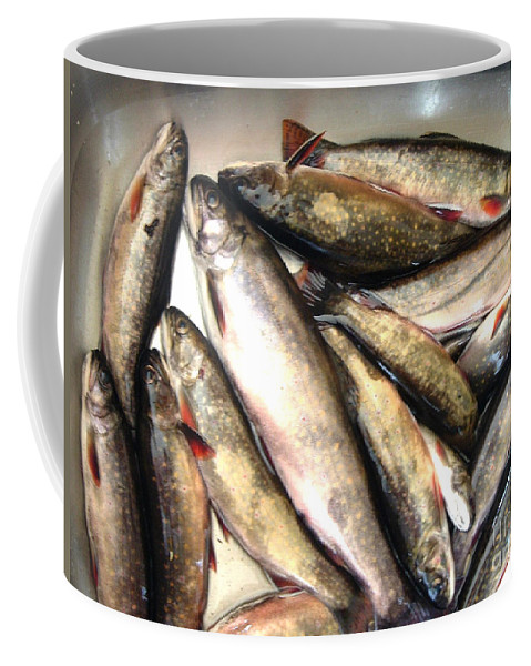 Trout Coffee Mug featuring the photograph Fine Catch Of Trout by Barbara Griffin
