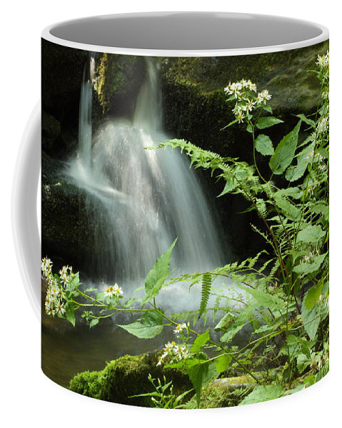 Tennessee Coffee Mug featuring the photograph Flowers And Falls by Andrew McInnes