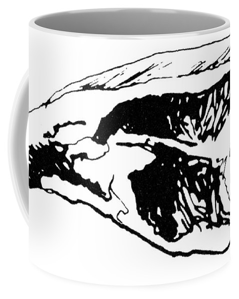 19th Century Coffee Mug featuring the photograph Food: Beef by Granger