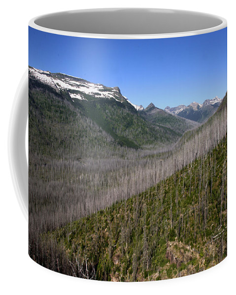 Forest Coffee Mug featuring the photograph Forest Fire Sticks-1 by Paul Cannon