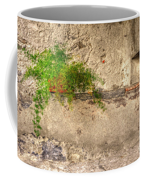 Green Coffee Mug featuring the photograph Green Plant by Mats Silvan