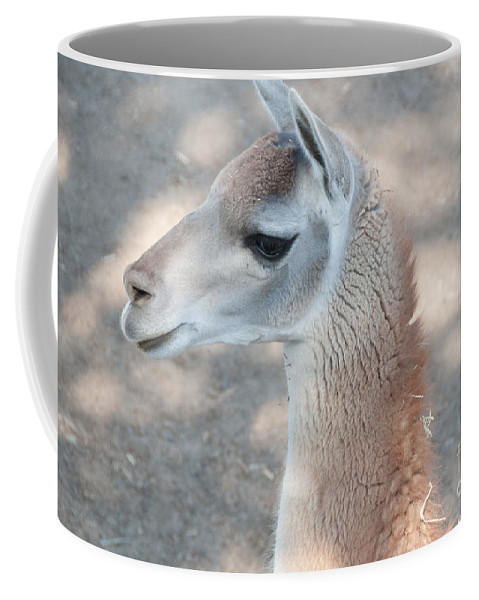 Animals Coffee Mug featuring the digital art Guanaco by Carol Ailles