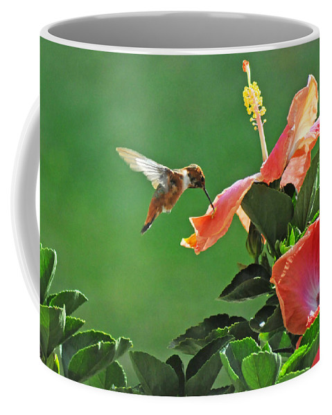 Hummer Coffee Mug featuring the photograph Hibiscus Hummer by Lynn Bauer