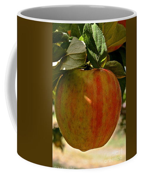 Landscape Coffee Mug featuring the photograph Honey Crisp by Susan Herber