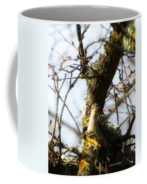 Bird Coffee Mug featuring the photograph I See You by Donna Blackhall