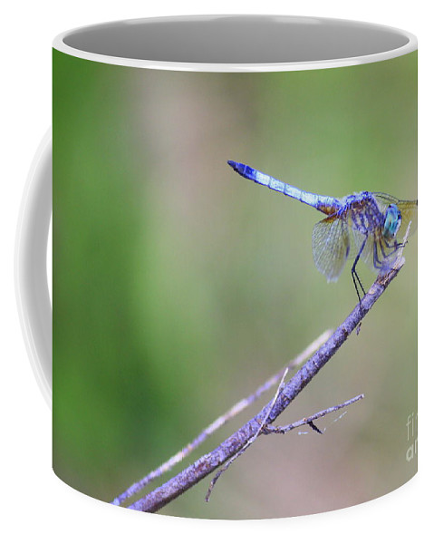 Dragonfly Coffee Mug featuring the photograph Living On The Edge by Carol Groenen
