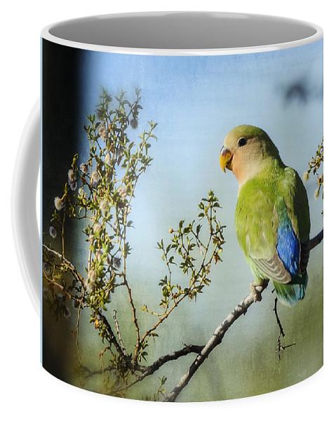 Lovebirds Coffee Mug featuring the photograph Lovebird by Saija Lehtonen