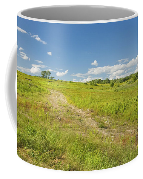 Field Coffee Mug featuring the photograph Maine Blueberry Field In Summer by Keith Webber Jr