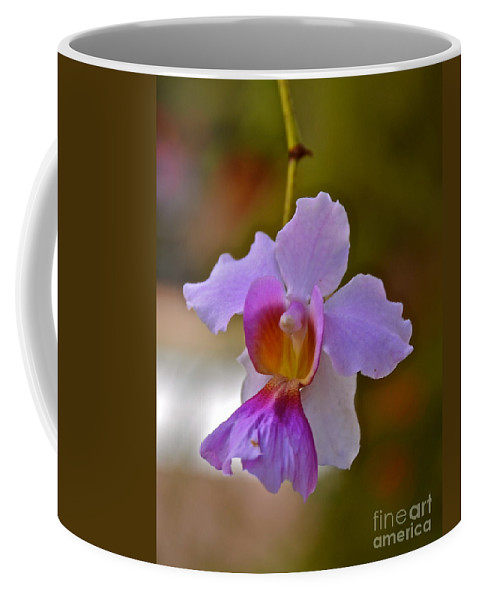 Orchid Coffee Mug featuring the photograph Orchid by Carol Bradley