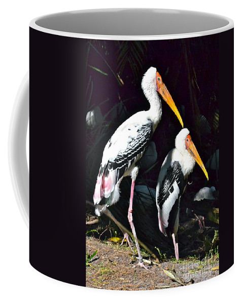 Stork Coffee Mug featuring the photograph Painted Storks by Carol Bradley