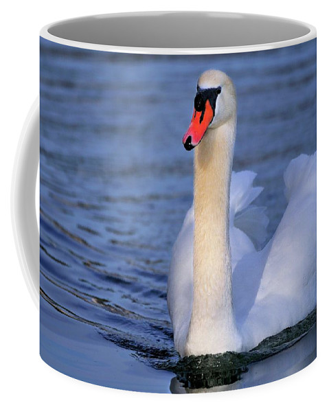 Mute Coffee Mug featuring the photograph Peaceful by Bill Dodsworth