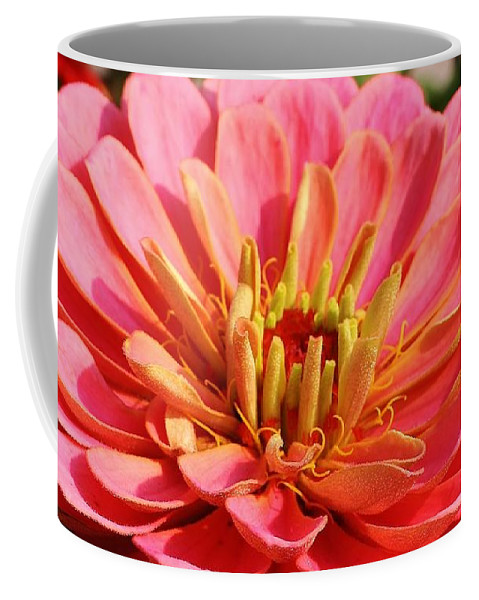 Flora Coffee Mug featuring the photograph Petals Of Pink by Bruce Bley