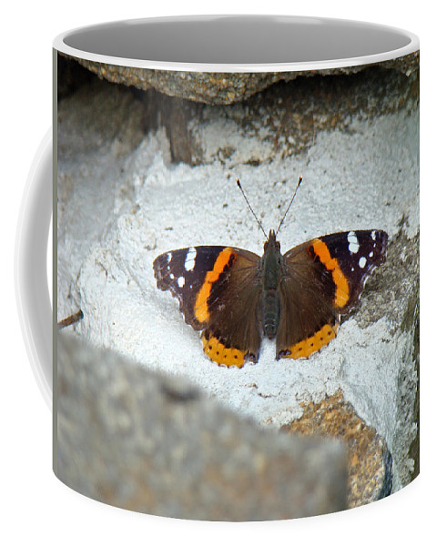 Red Admiral Coffee Mug featuring the photograph Red Admiral Butterfly - Vanessa Atalanta by Mother Nature