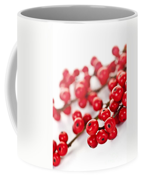 Berries Coffee Mug featuring the photograph Red Christmas Berries by Elena Elisseeva