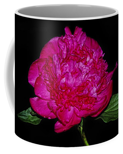 Peony Coffee Mug featuring the photograph Red Peony by Dave Mills