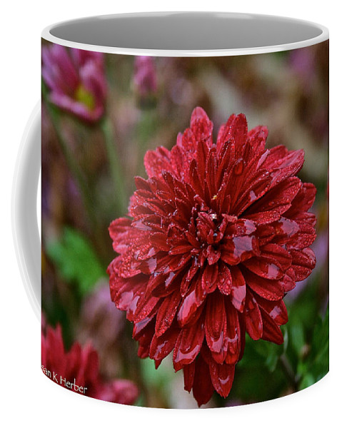 Flower Coffee Mug featuring the photograph Red Petals by Susan Herber