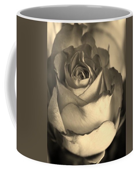 Flora Coffee Mug featuring the photograph Rose In Sepia by Bruce Bley