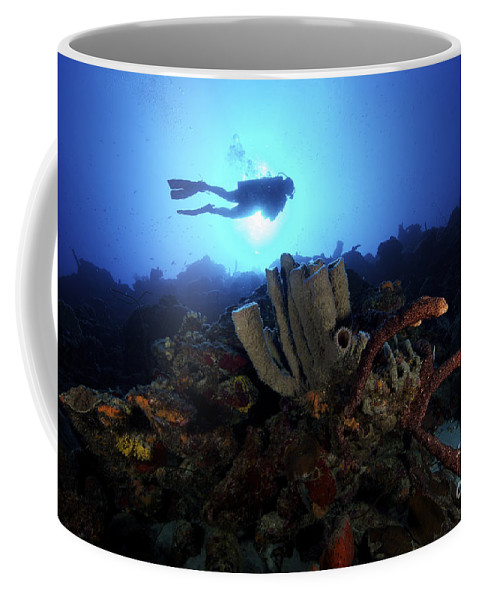 Sponge Coffee Mug featuring the photograph Scuba Diver Swims By Some Large Sponges by Terry Moore