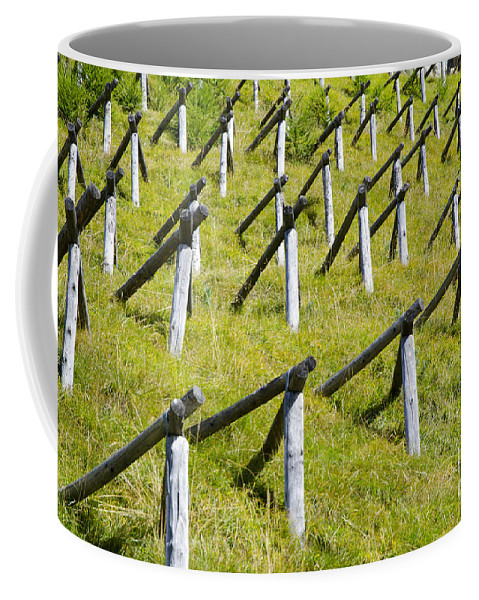 Snow Protection Coffee Mug featuring the photograph Snow Protection by Mats Silvan