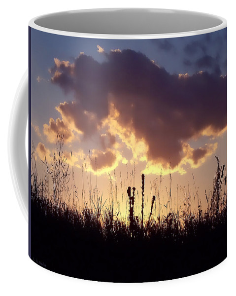 Lauren Radke Coffee Mug featuring the photograph Summer Sunset by Lauren Radke