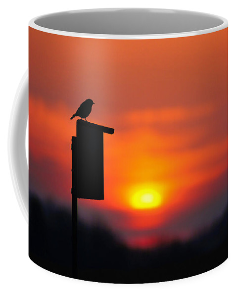 Bird Coffee Mug featuring the photograph The Early Bird by Bill Pevlor