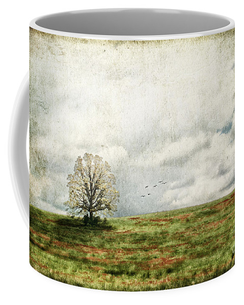 Aged Coffee Mug featuring the photograph The Lone Tree by Darren Fisher