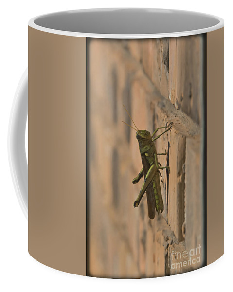 Grasshopper Coffee Mug featuring the mixed media The Visitor by Kim Henderson