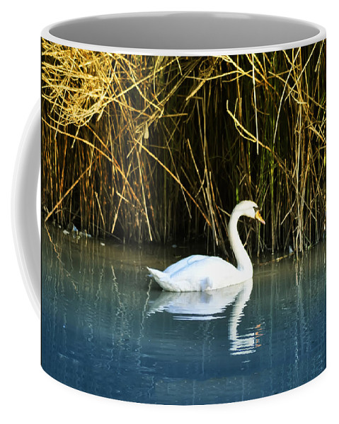 The White Swan Coffee Mug featuring the photograph The White Swan by Bill Cannon