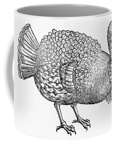 1560 Coffee Mug featuring the photograph Turkey, 1560 by Granger