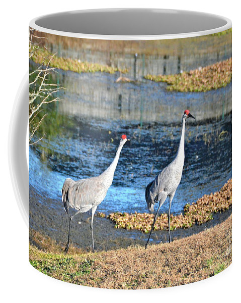 Cranes Coffee Mug featuring the photograph Two Of A Kind by Carol Bradley