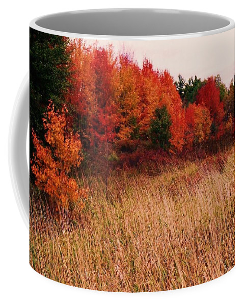 Autumn Coffee Mug featuring the photograph Vermont Autumn by John Scates