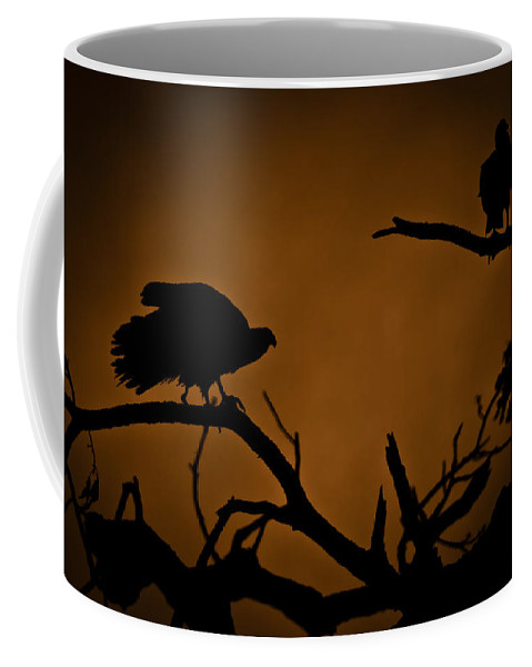Vultures Coffee Mug featuring the photograph Watcher by Kim Henderson