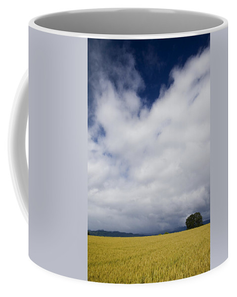 Farming Coffee Mug featuring the photograph Wheat Field And Storm by Karen Ulvestad