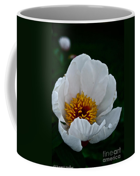 Plant Coffee Mug featuring the photograph White Petals by Susan Herber