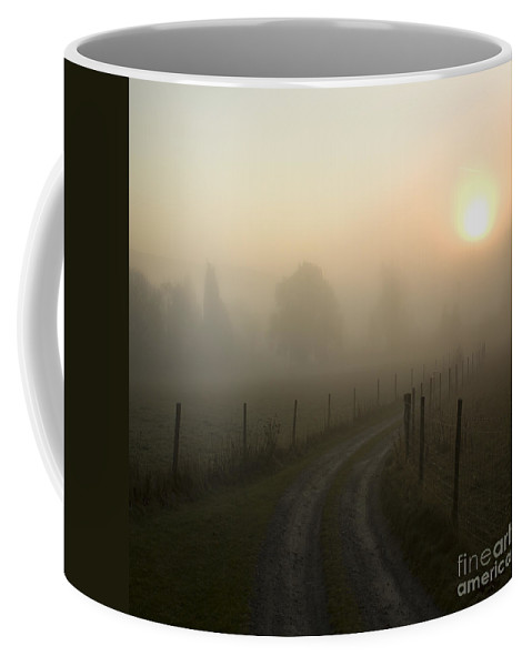 Mist Coffee Mug featuring the photograph Misty Morning by Angel Ciesniarska