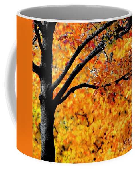 Fiery Orange Leaves Coffee Mug featuring the photograph Blaze by Optical Playground By MP Ray