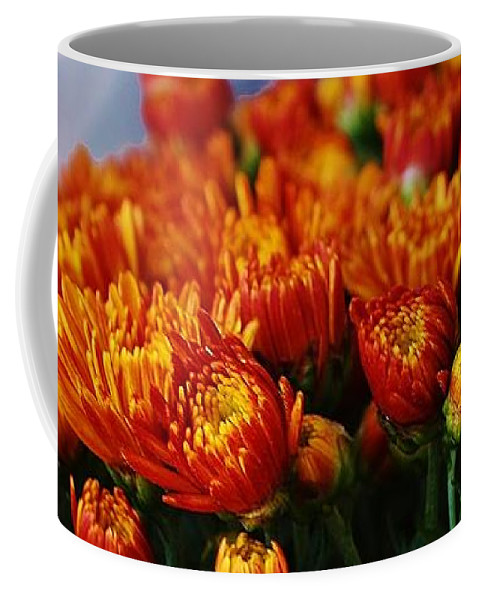 Flora Coffee Mug featuring the photograph Bronze Mums by Bruce Bley