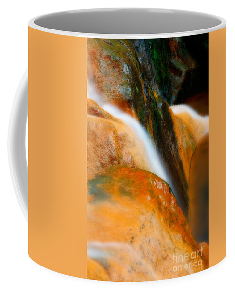 Caldeira Velha Coffee Mug featuring the photograph Caldeira Velha Park by Gaspar Avila