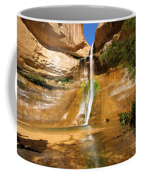 Lower Calf Creek Falls Coffee Mug featuring the photograph Calf Creek Falls Canyon by Adam Jewell