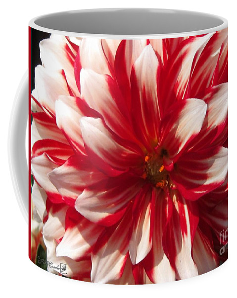 Mccombie Coffee Mug featuring the photograph Dahlia Named Myrtle's Brandy by J McCombie