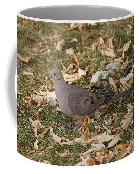 Birds Coffee Mug featuring the photograph Doves by Lori Tordsen