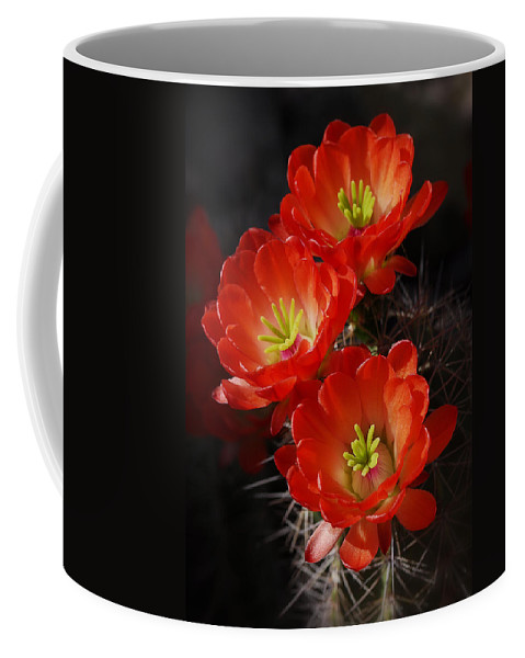 Claret Cup Cactus Coffee Mug featuring the photograph Red Hedgehog by Saija Lehtonen