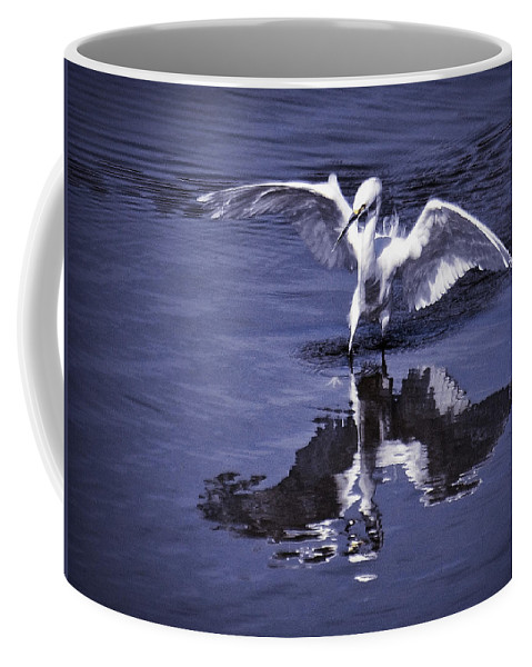 Snowy Egret Coffee Mug featuring the photograph Reflections by Saija Lehtonen